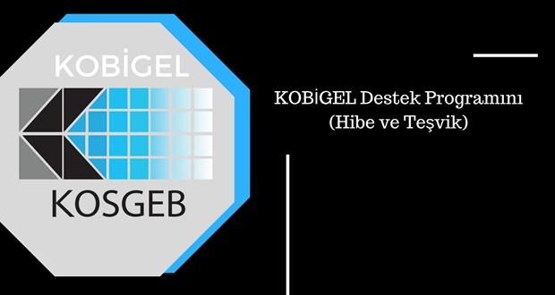 KOBİGEL Destek Programını (Hibe ve Teşvik)